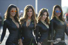 motogp valencia Gp 2016 Hot monster energy girls