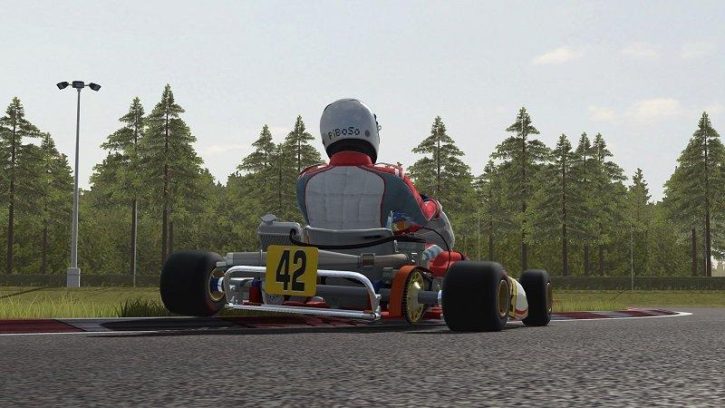 kart-racing-pro-kz-tony-kart.jpg